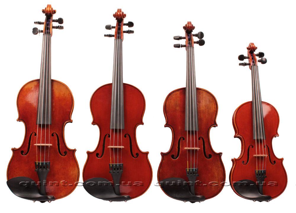 Классификация скрипок